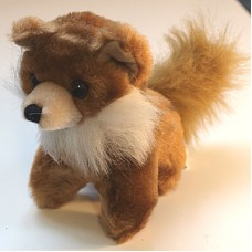 Fox - small woodland